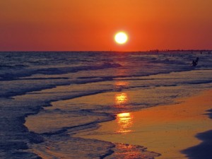 sunset siesta key
